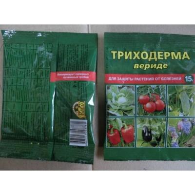 Методы борьбы с фитофторозом на помидорах
